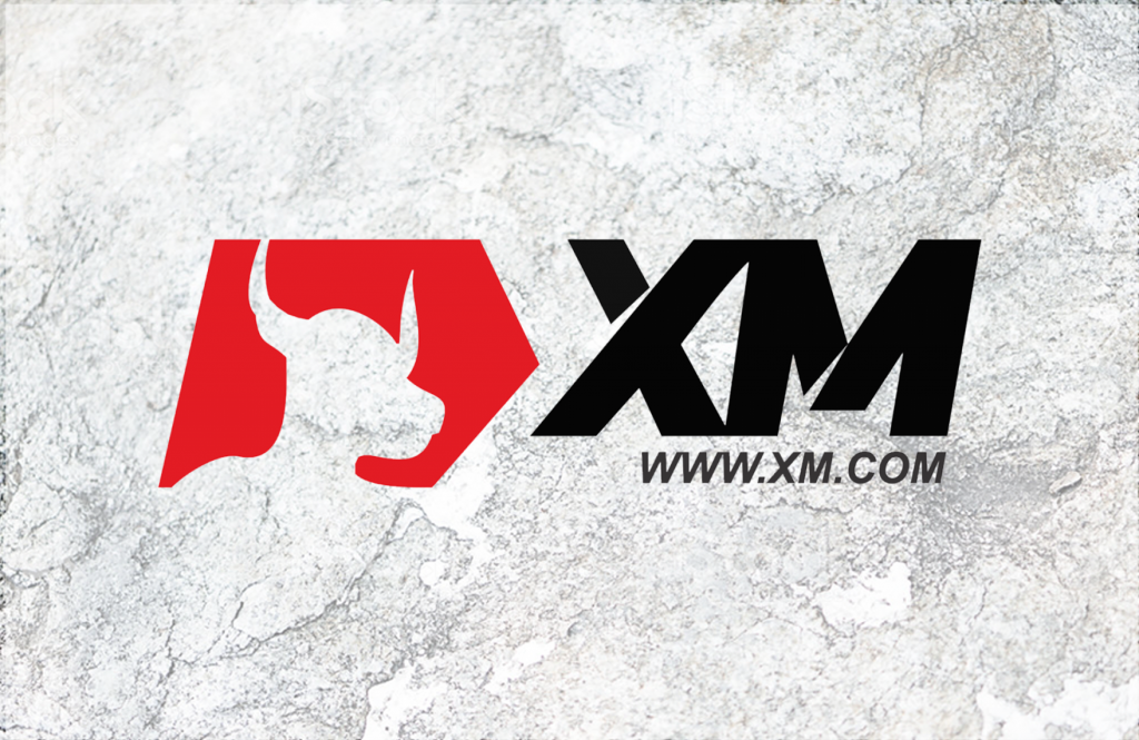 XM Review and Tutorial 2020